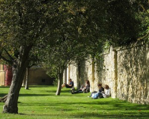 students reading in sun